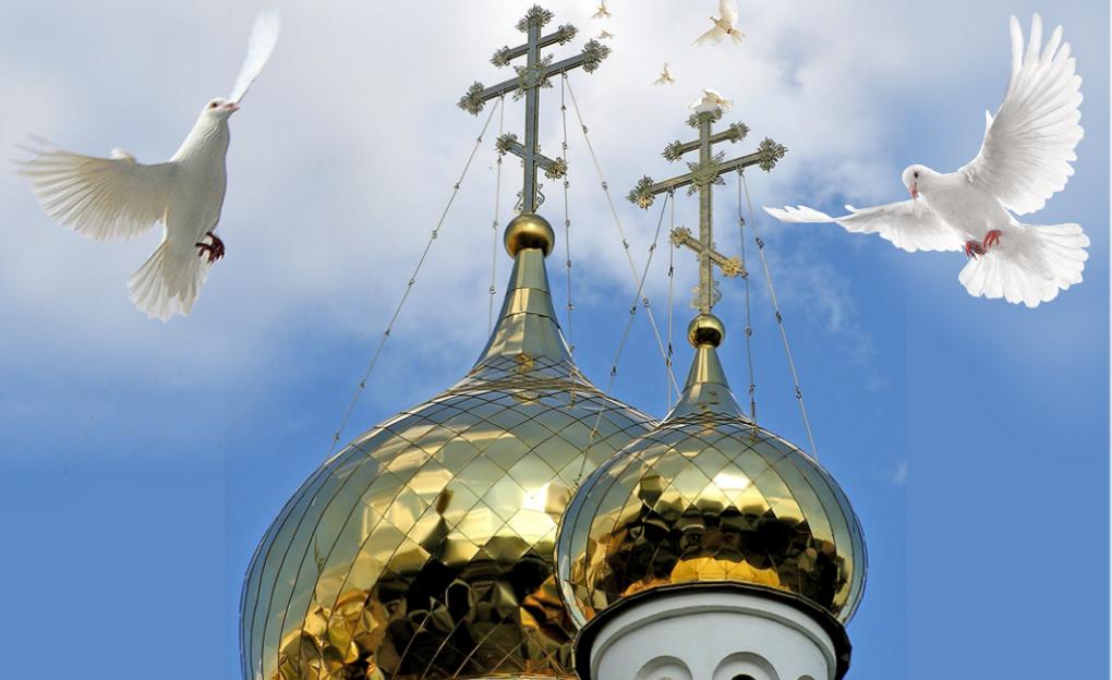 Больничный отдел Сумской епархии